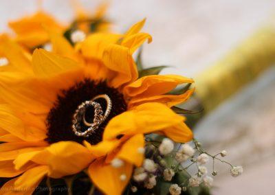 Alecia and Bear's Wedding-581
